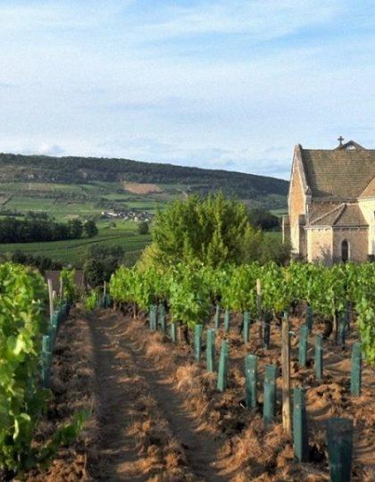 Bourgogne-frankrijk