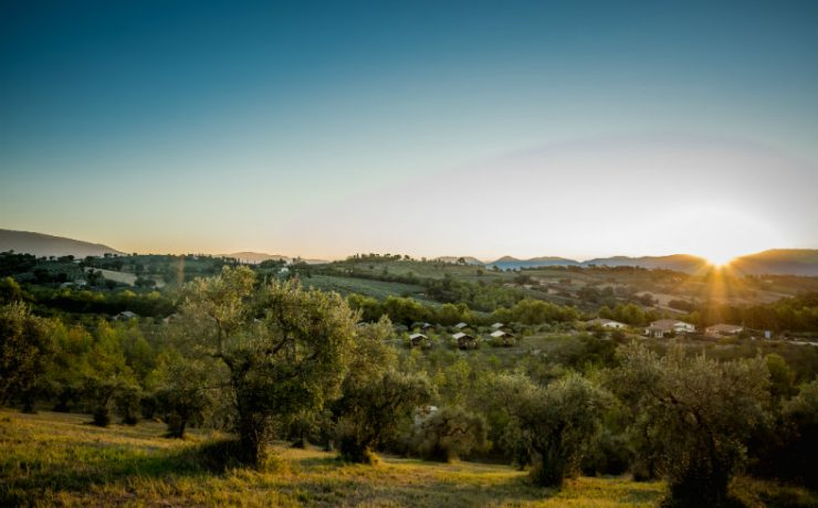 Pian di Boccio, glamping tussen de olijfbomen