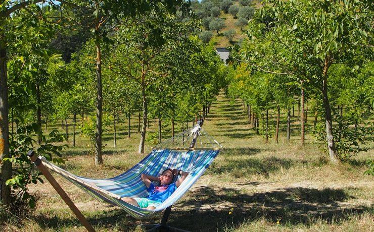 Luieren in de hangmat op camping Pian di Boccio