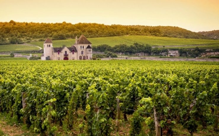 Wijnchateau's in Bourgogne