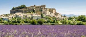 Lavendel Grignan, Drome